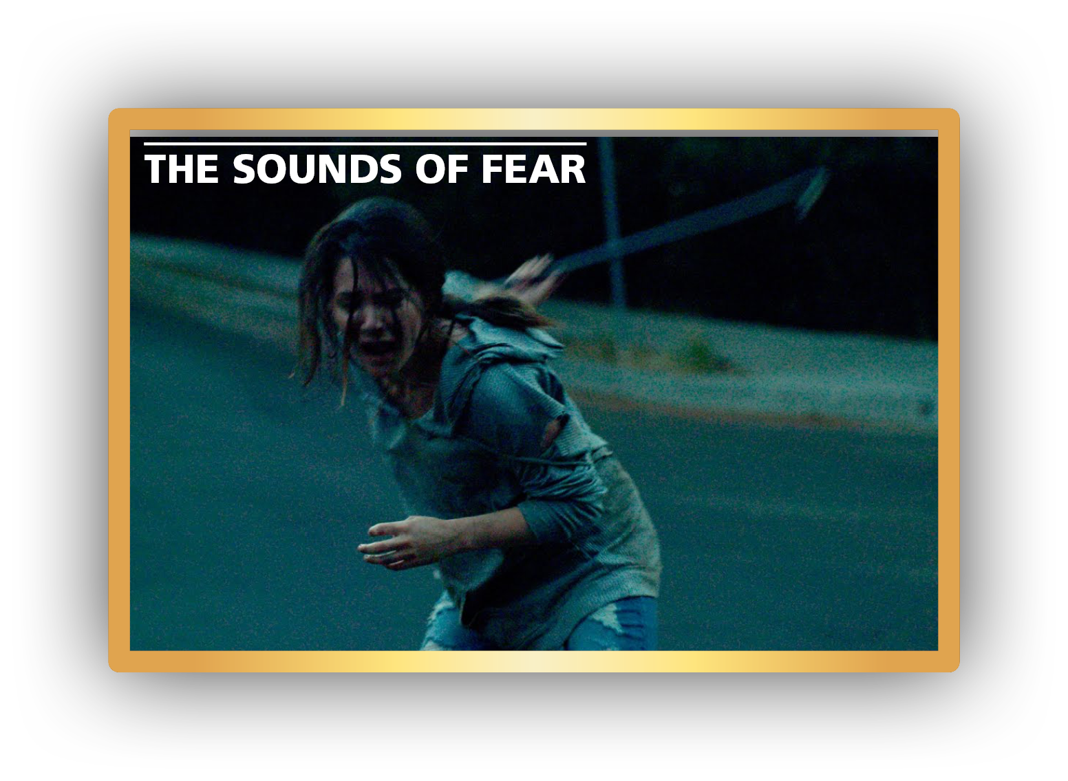 Kortfilm 24 november kl 16:30 - The Sounds of Fear